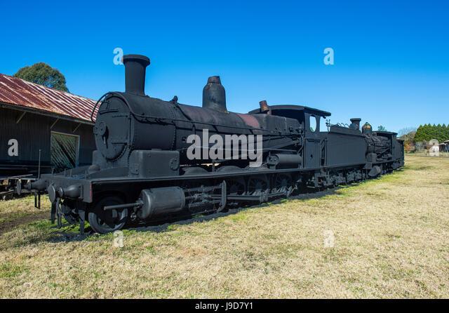 Old steam trains from the Dorrigo railway line, Dorrigo National Park, UNESCO, New South Wales, Australia, Pacific - Stock Image