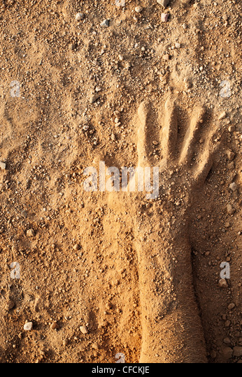 Dusty dirty covered hand - Stock Image