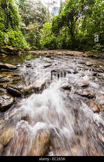 Garden of eden stock photos garden of eden stock images alamy River flowing from the garden of eden