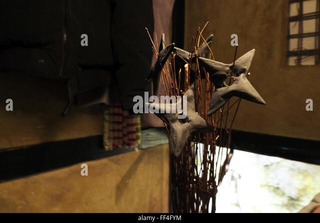 Edible ninja stars (shuriken star-blades grissini) entree at Ninja Akasaka restaurant, Tokyo - Stock Image