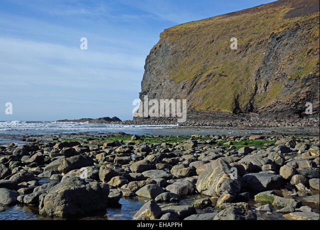 The beach and Pencannow Point at Crackington Haven, near Bude, Cornwall, UKCrackington Haven, near Bude, Cornwall, - Stock Image