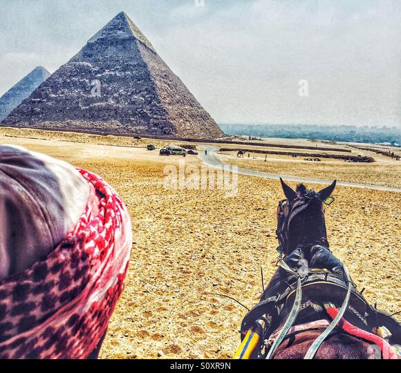 Man drives a carriage at the Great Pyramids of Egypt - Stock-Bilder