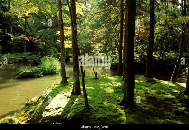 Koke dera stock photos koke dera stock images alamy - Moosgarten kyoto ...