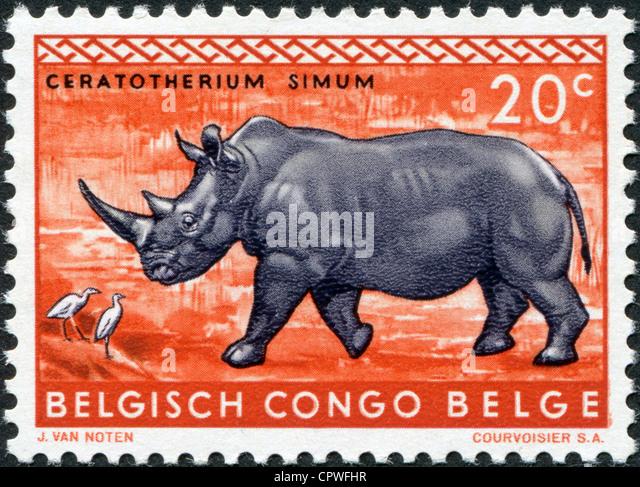 BELGIAN CONGO - CIRCA 1959: Postage stamps printed in the Belgian Congo, shows a White rhinoceros, circa 1959 - Stock-Bilder