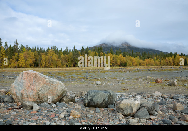 Stone field on the autumn forest on sky background - Stock Image