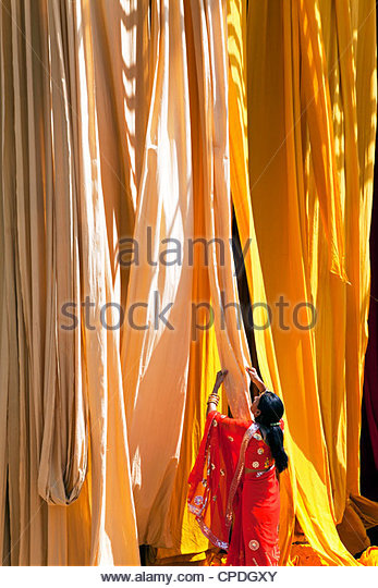 Woman in sari checking the quality of freshly dyed fabric hanging to dry, Sari garment factory, Rajasthan, India, - Stock-Bilder
