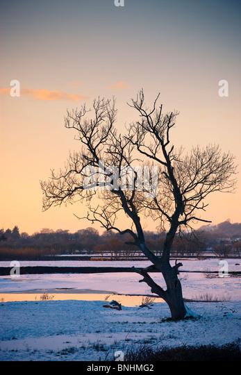 River Towy near Dryslwyn Llandeilo Carmarthenshire Wales in snow - Stock-Bilder