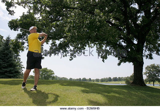 Wisconsin Kenosha Kansasville Brighton Dale Links golf course county park system man swing club tree sport recreation - Stock Image