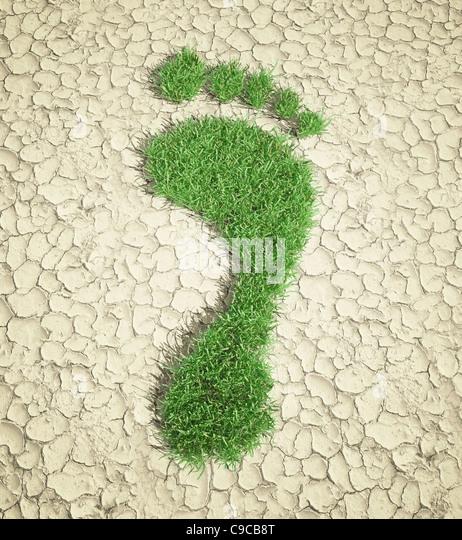 Ecological footprint concept illustration - grass patch footprint - Stock Image