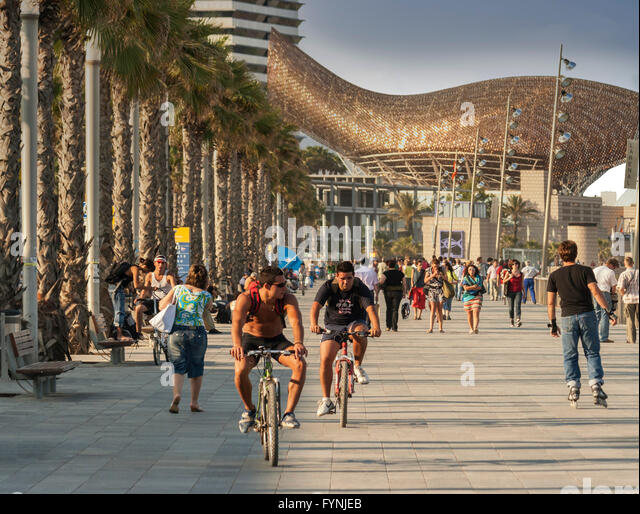 People cycling along the Passeig Maritim, The fish sculpture by Frank Gehry in the background, Barceloneta, Barcelona - Stock Image