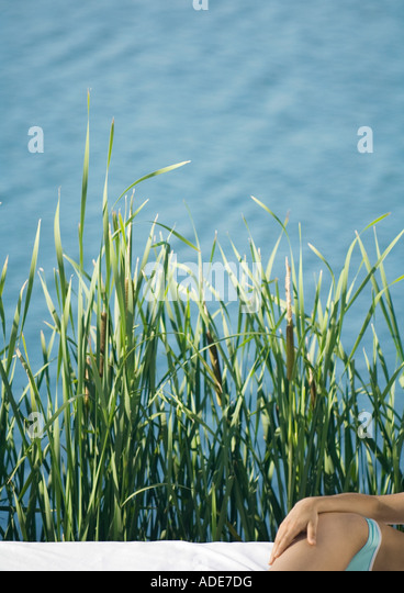 Woman lying on side, cropped view of hand on hip, water and reeds in background - Stock Image