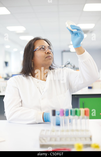 Lab technician chemical testing at the Leeds Metropolitan University.Bio Chemistry Laboratories. - Stock Image
