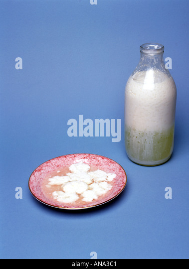 sour milk in a bottle and in a saucer - Stock Image