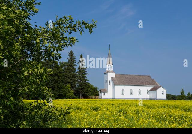 The historic Ste. Thérèse Roman Catholic Church building with a yellow canola field at Cardinal, Manitoba, - Stock-Bilder