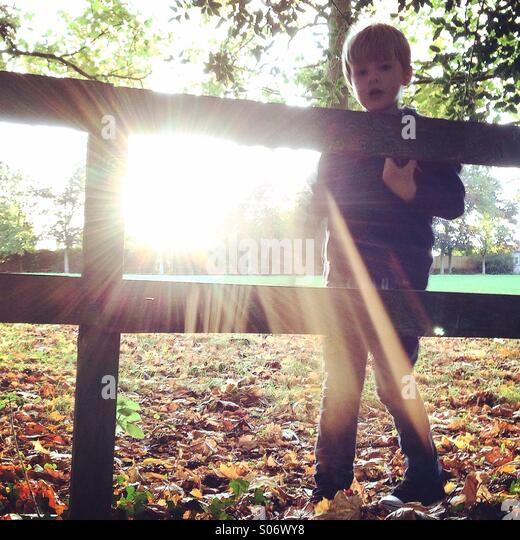 Autumn sunshine - Stock Image