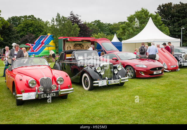 Vintage car show - Jaguar's - Stock Image