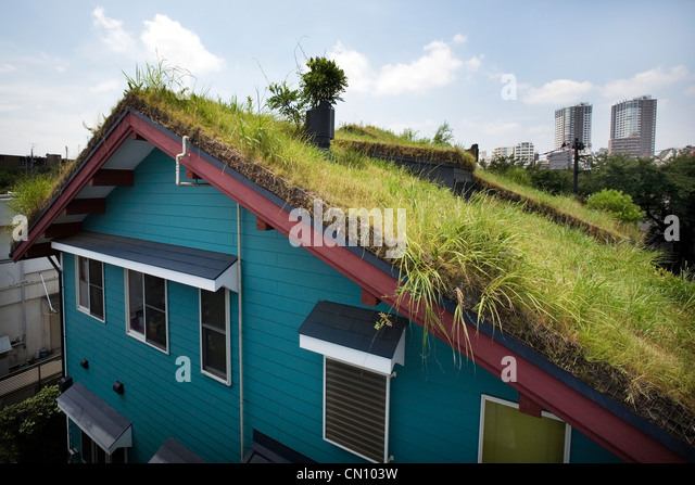 The green roof of Studio Ghibli. Hayao Miyazaki's atelier in Mitaka Tokyo. - Stock Image