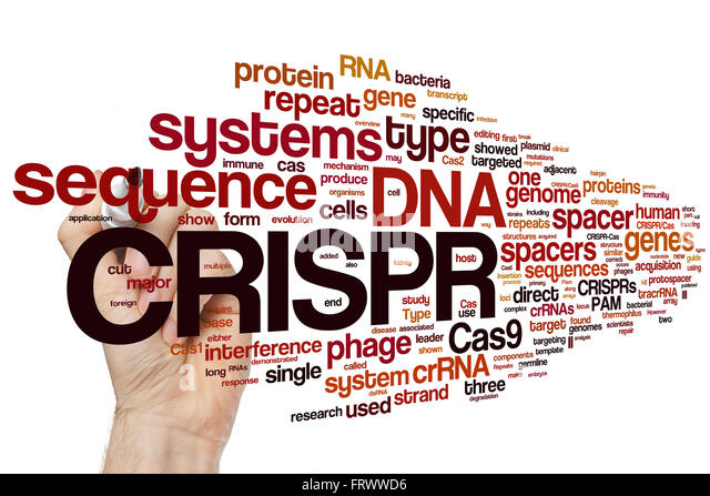 crispr cas9 history and engineering Gene editing is performed using  key among gene-editing technologies is a molecular tool known as crispr-cas9,  such as whether genetic engineering should be.