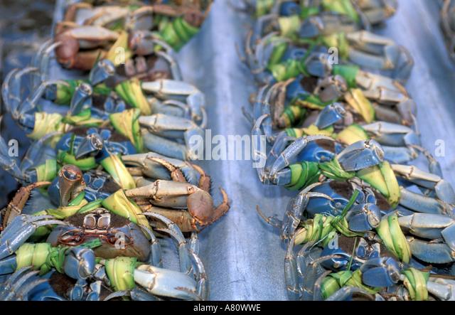 Tobago Scarborough market land crabs - Stock Image