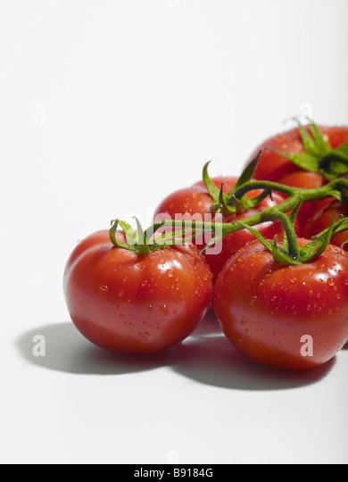 Fresh Tomatoes - Stock Image