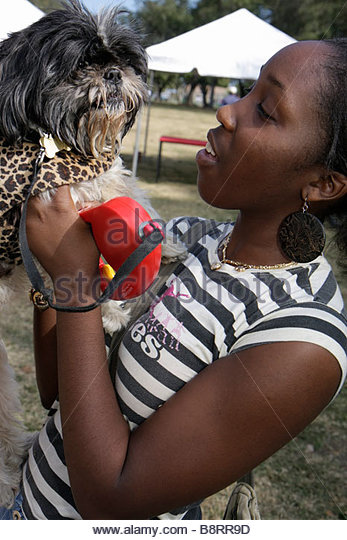 Miami Florida Legion Park Dogs On The Catwalk fashion Black girl teen Shih Tzu hairy toy dog holding leash - Stock Image