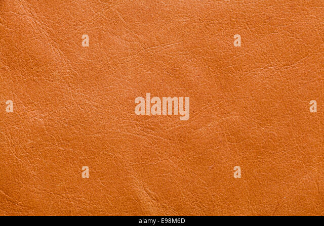 Tan Leather Stock Photos & Tan Leather Stock Images