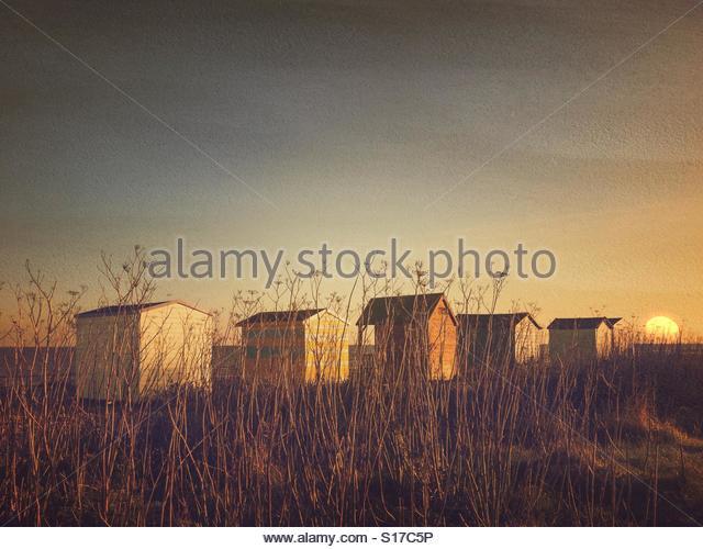 Beach Huts, Kingsdown Beach, Deal, Kent, UK, with sun effect added. - Stock Image