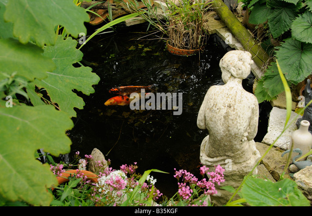 Koi carp garden pond stock photos koi carp garden pond for Ornamental fish garden ponds