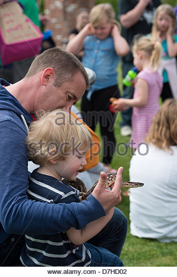 A Father and son hold a snake at a reptile handling show - Stock Image
