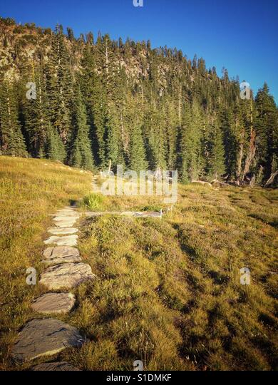 Follow the trail in Panther Meadow on Mt Shasta - Stock Image