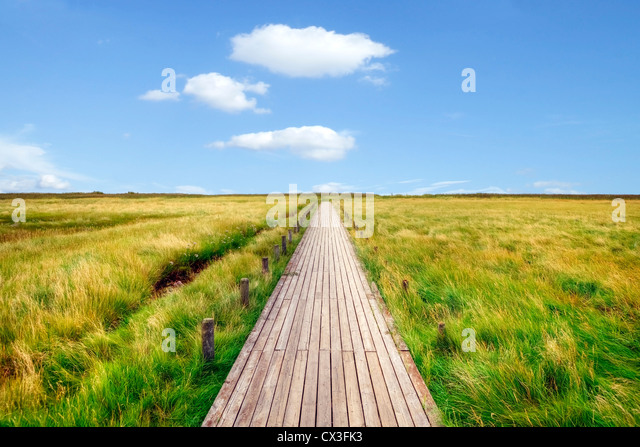 boardwalk, mudflats, Kampen, Sylt, Schleswig-Holstein, Germany - Stock Image