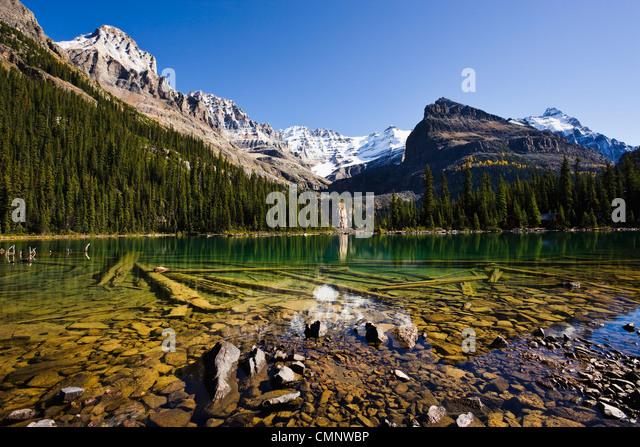 Lake O'Hara and Mountains, Yoho National Park, British Columbia - Stock Image
