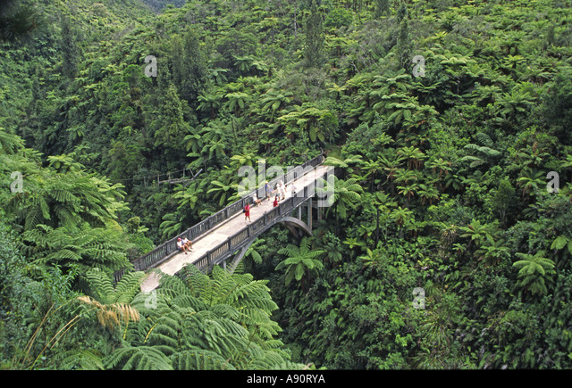 new zealand bridge to nowhere Whanganui National Park build 1917 - Stock Image