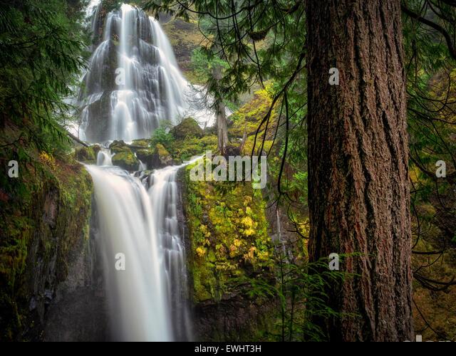 Falls Creek Falls, Washington. - Stock Image