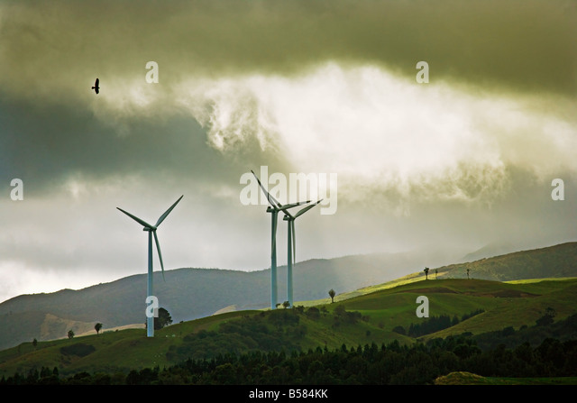 Wind turbines and soaring bird of prey, Ruahine ranges, Manawatu, North Island, New Zealand, Pacific - Stock Image