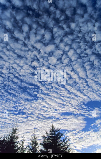 Cloud formation at blue sky / Syddanmark - Stock Image