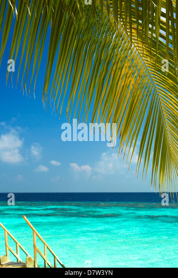 Wooden stairs out to tropical sea, Maldives, Indian Ocean - Stock Image