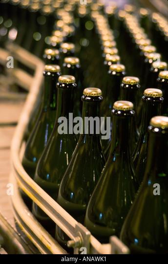Washington Paterson Columbia Crest Winery conveyor belt automated bottling wine production - Stock Image