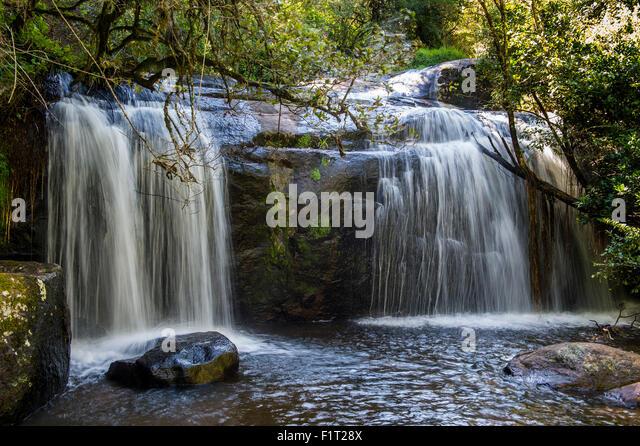 Williams Falls on the Zomba Plateau, Malawi, Africa - Stock Image