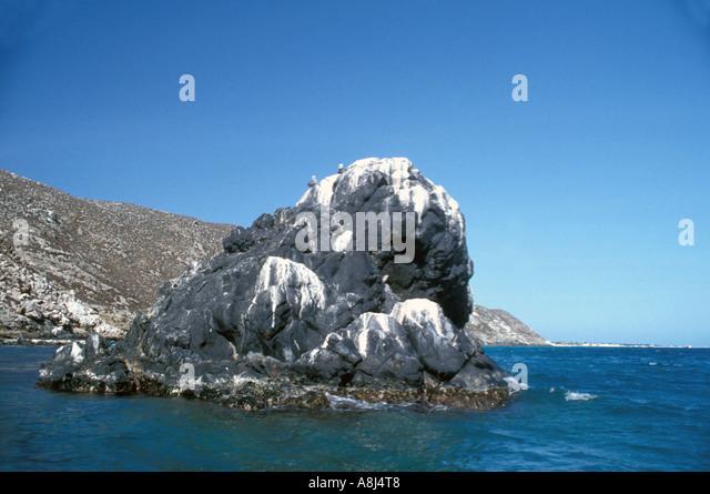 Los Roques Archipelago Venezuela, Gran Roque bird colony - Stock Image