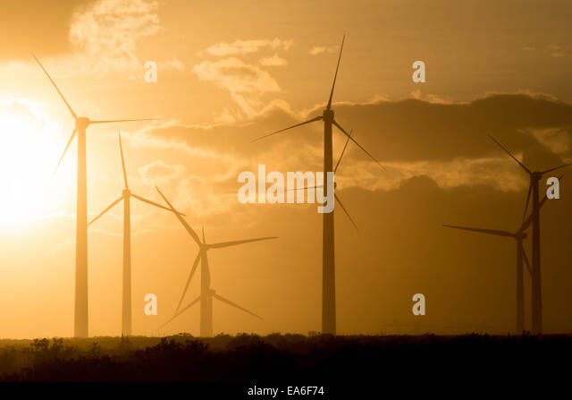 USA, California, Riverside County, Windmills of San Gorgonio Pass Wind Farm at sunset - Stock Image