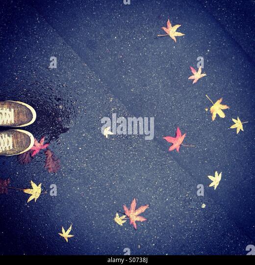 Looking down in autumn - Stock-Bilder