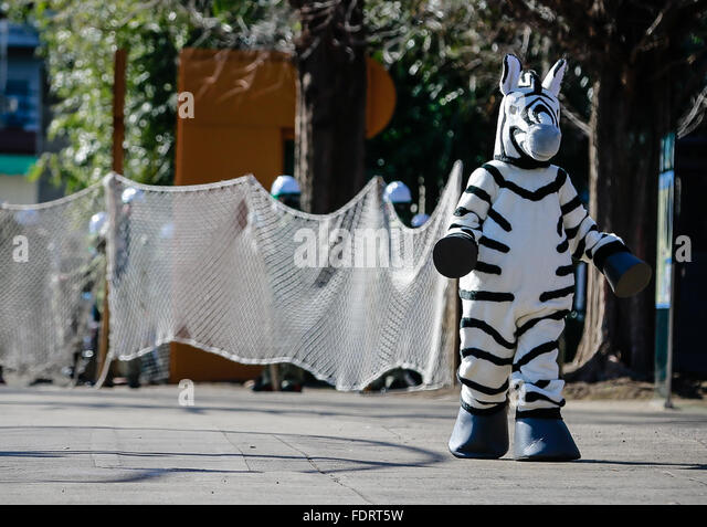 Tokyo, Japan. 2nd Feb, 2016. A zoo staff member dressed in a zebra costume is seen roaming the grounds as zookeepers - Stock Image