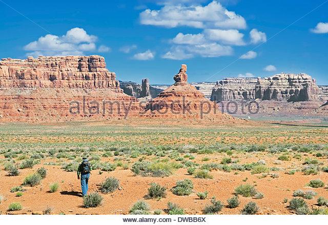 Trekker, Valley of the Gods, Utah, US - Stock Image