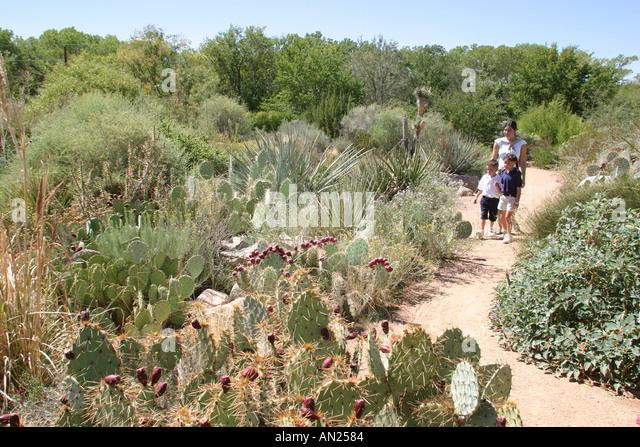 Albuquerque New Mexico Biological Park Rio Grande Botanic Garden Native Garden W - Stock Image