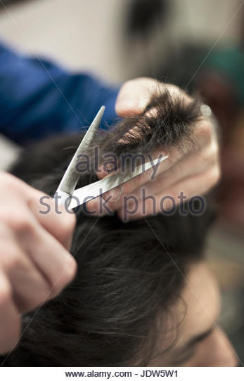 Hairdresser cutting customer's hair - Stock-Bilder