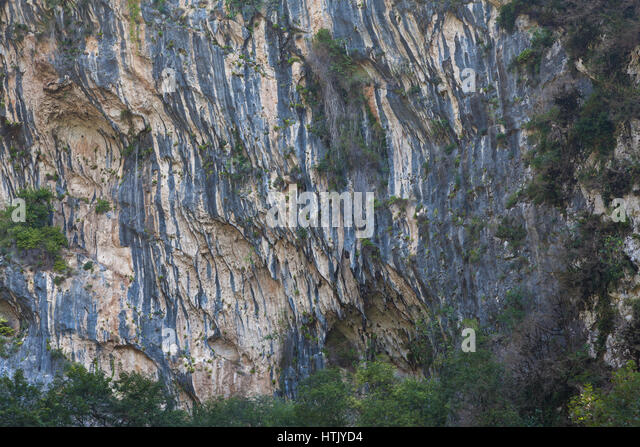 Sheer cliffs in the upper reaches of the Mchishta River in Abkhazia - Stock Image