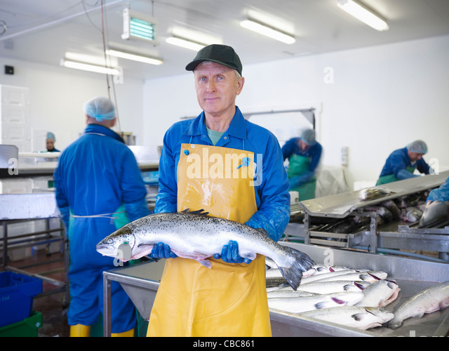 Fishmonger holding catch of the day - Stock Image