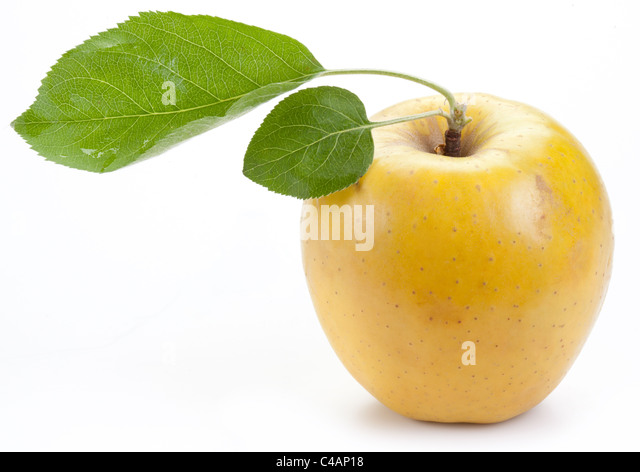 Ripe yellow apple with green leaves. - Stock Image