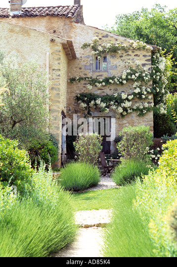Traditional stone French building with climbing rose - Stock-Bilder